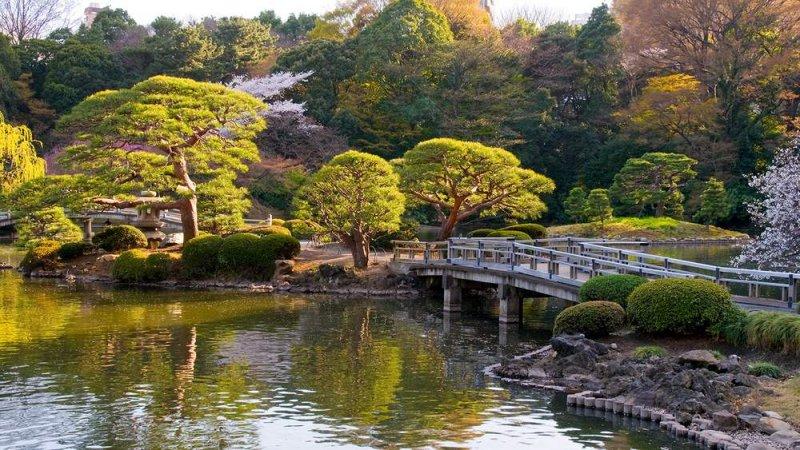 https://www.izbilir.com/uploads/images/2018/07/tokyo-yoyogi-park-98151277.jpg