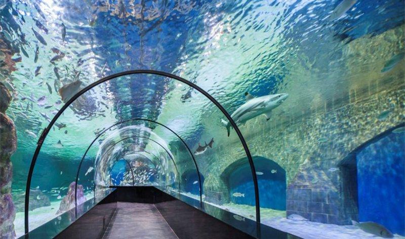 https://www.izbilir.com/uploads/images/2018/08/aquaria-klcc-81995023.jpg